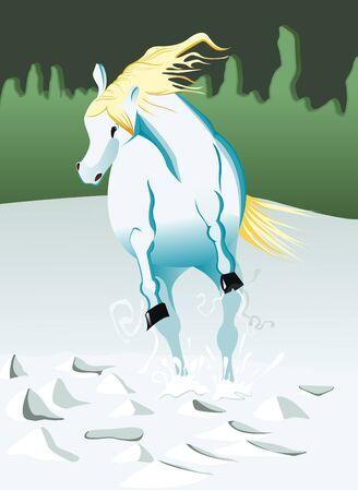 horse running: White horse running