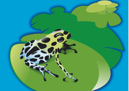 poison arrow: Frog on waterlily