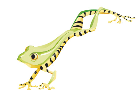 poison arrow: frog jumping