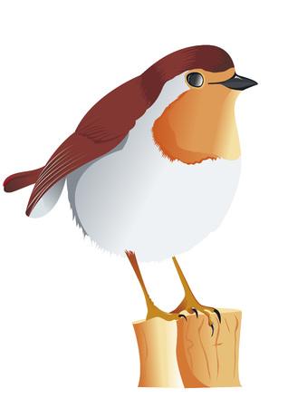 nude outdoors: Robin singing on tree