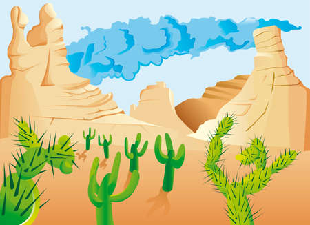 cholla: Desert with cactus
