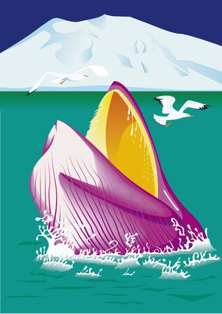 whale emerging from the sea Illustration