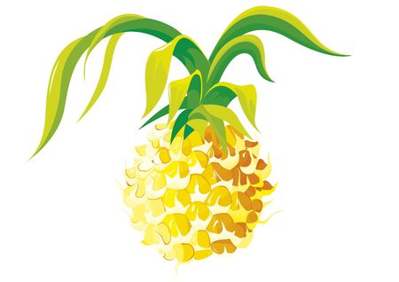 Yellow Pineapple. Ilustração