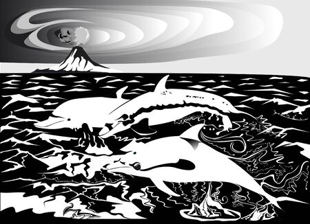 Three dolphins in black and white