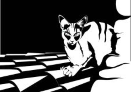 Kitten in black and white illustration.