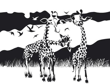Three giraffes in black and white design