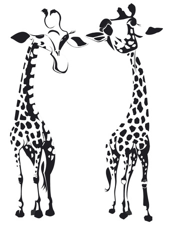 Two giraffes in black and white.