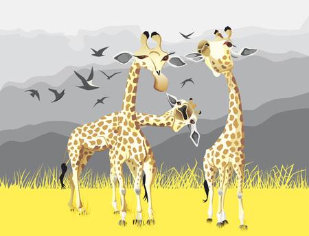 Three giraffes illustration.
