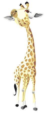 Giraffe look up illustration.