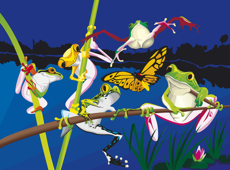 Five frogs are playing around their pond.