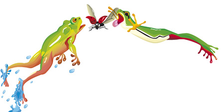 Two frogs are jumping together