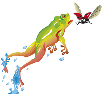 Frog is jumping to catch a ladybug