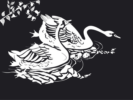 two swans in black and white vector on river Illustration