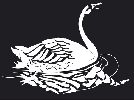 One swan in black and white 向量圖像