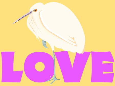 Egret in love