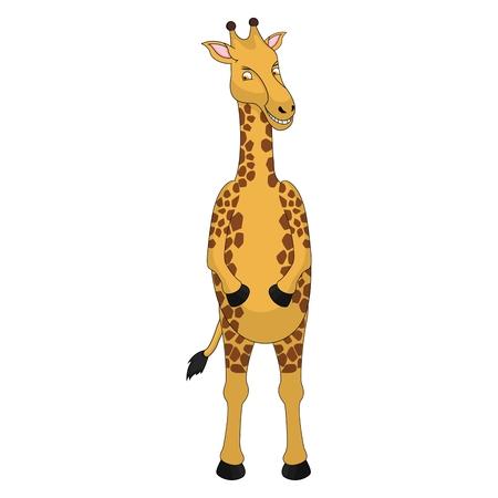 colourfull: Giraffe Cartoon Vector - colourfull Illustration