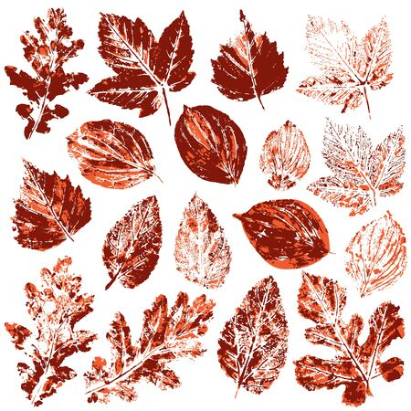 Set of vector drawings with acrylic paints. Collection of autumn leaves in red. Two-color print, imprint. Good for autumn design of banners Illustration