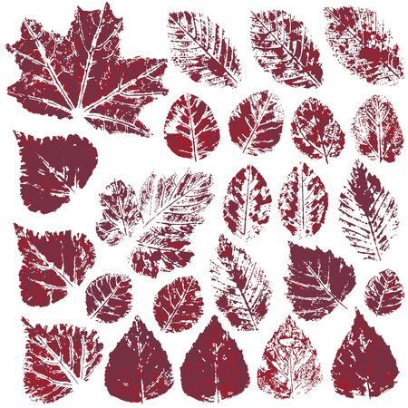 Collection of autumn leaves in red. Set of vector drawings with acrylic paints. Two-color print, imprint. Good for autumn design of banners, flyers