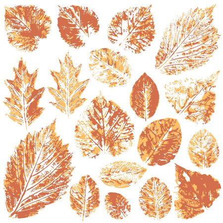 Collection of autumn leaves in orange. Two-tone prints of paint. Set of vector drawings with acrylic paints. Good for autumn design of banners, flyers, advertising, printing materials