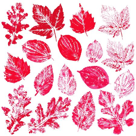 Set of vector drawings with acrylic paints. Collection of autumn leaves in red. Two-color print, imprint. Good for autumn design of banners, flyers Çizim