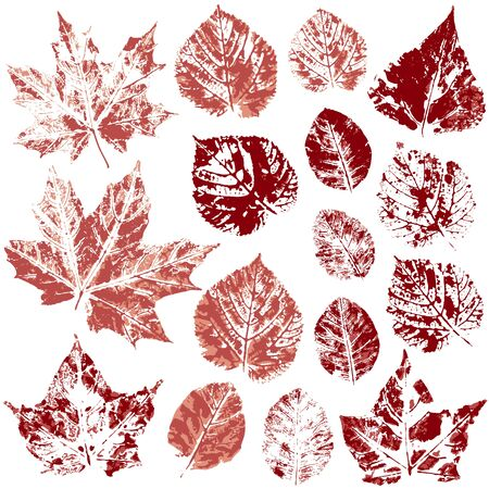 Set of vector drawings with acrylic paints. Collection of autumn leaves in red. Two-color print, imprint. Good for autumn design of banners, flyers, advertising materials