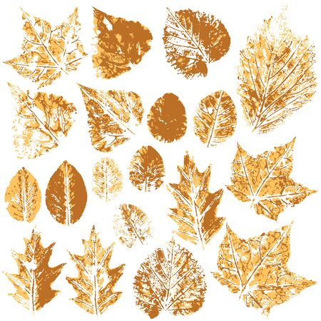 Collection of autumn leaves in orange. Two-tone prints of paint. Set of vector drawings with acrylic paints. Good for autumn design of banners, flyers, advertising materials