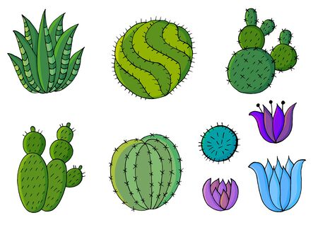 Cute vector illustration. Set of cartoon images of cacti. Cacti, aloe, succulents in a creative collection. Decorative natural elements are isolated on white