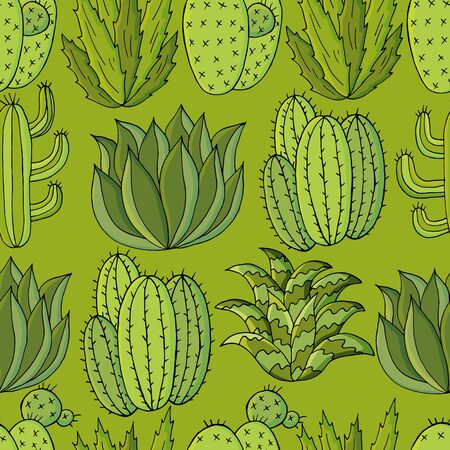Vector seamless pattern of different cacti. Cute background from tropical plants. Exotic wallpaper in green colors. Trending image