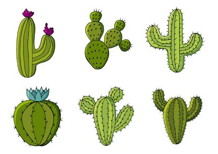 Cute vector illustration. Set of cartoon images of cacti. Cacti, aloe, succulents in a creative collection. Print pin, badge. Decorative natural elements are isolated on white