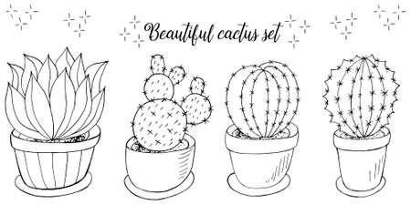 botanical illustration. Tropical pattern of monochrome cacti, aloe. Elephants, flowering exotic plants Illustration