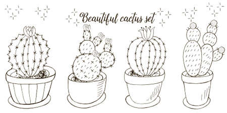 botanical illustration. Tropical pattern of different cacti, aloe, exotic animals. Butterflies, monochrome flowers, hearts Illustration