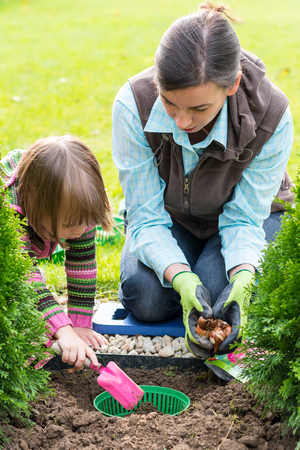Gardening, planting, flowers bulbs - mother and daugther planting tulip bulbs