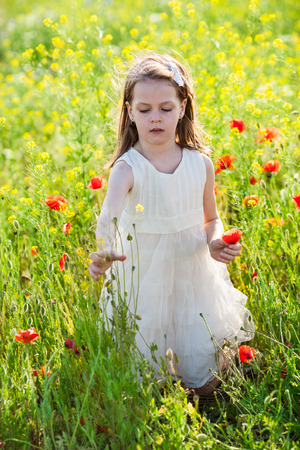 Sweet little girl in a white dress in the poppy seed meadow with wild spring flowers photo