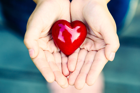 Female hands giving red heart - safety concept