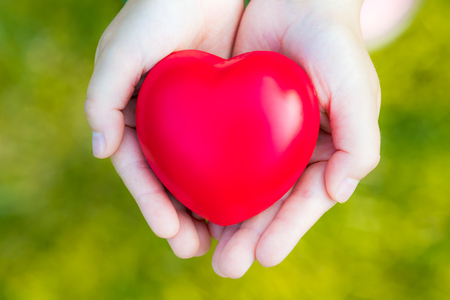 Female hands giving red heart on green background - safety concept Stock Photo