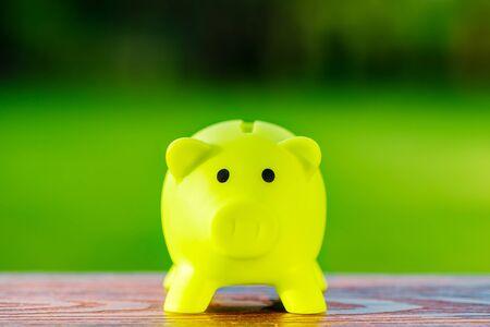 저장, 회계, 은행 및 비즈니스 계정 - 생태 절약 개념에 대 한 녹색 돼지 저금통 생태 개념