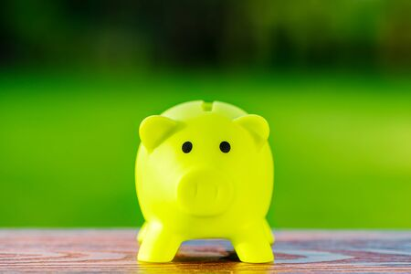 Green piggy bank ecological concept for saving, accounting, banking and business account - ecology saving concept Фото со стока