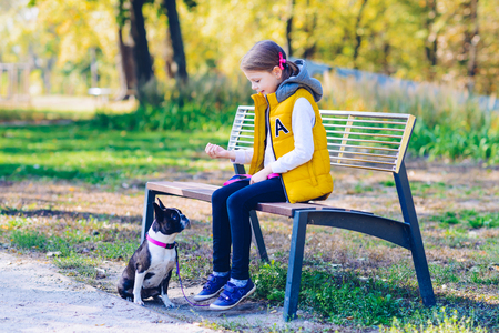 Little girl playing in an autumn park with boston terrier dog. Leisure time concept