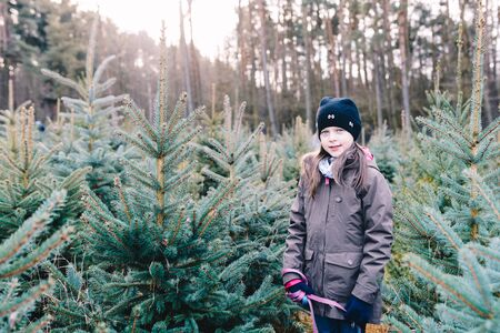 Little girl on a forest plantation choosing a Christmas tree