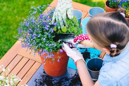 Mother and daughter planting flowers in pots in the garden - concept of working together, closeness, spending leisure time with family