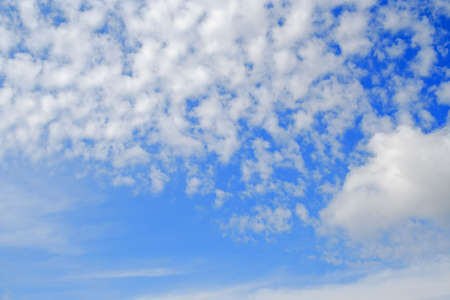 cottonwool: cottonwool clouds on the blue sky