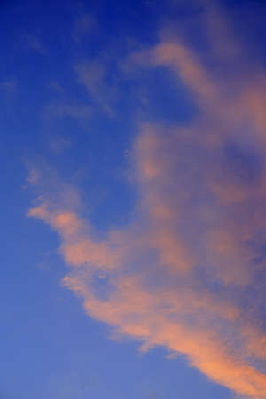 cottonwool: clouds at the morning on the sky