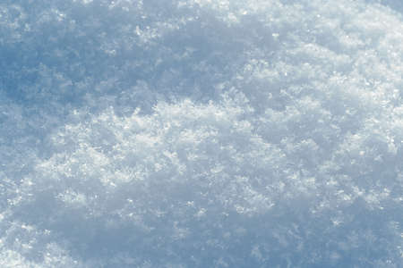 snow surface with visible snowflakes texture