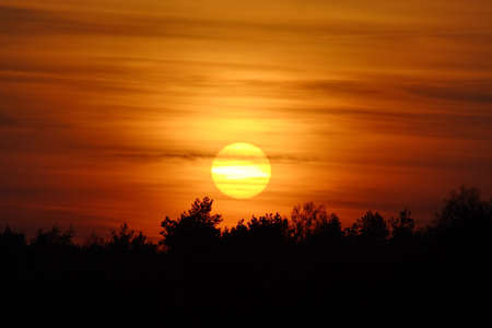 Sunset with big Sun disc with fuzzy layered clouds over trees silhouette photo