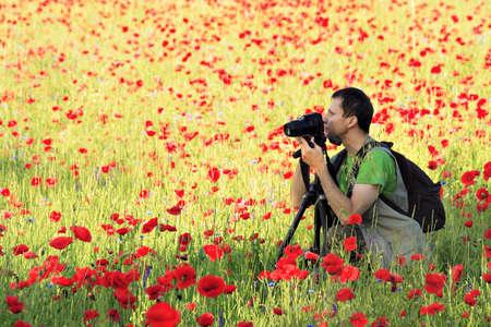 Foto graaf met de camera op statief omringd door papaver veld  Stockfoto