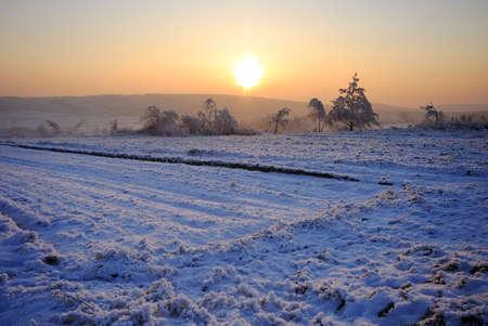 Hazy luce tramonto sui campi innevati con alberi e colline in background  Archivio Fotografico - 7445847