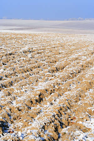Landscape with plowed field and some snow in winter Stock Photo - 7727997