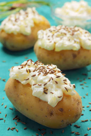 Boiled potatoes with cottage cheese and caraway seeds topping Stock Photo - 8006403