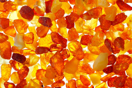 amber: Close up shot of baltic amber stones  Backlight illumination