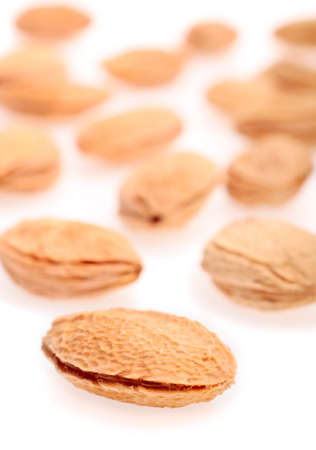 apricot kernels: Apricot (Prunus armeniaca) seeds on white background Stock Photo